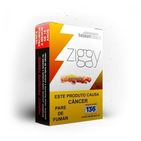 Ziggy Tropical 50g